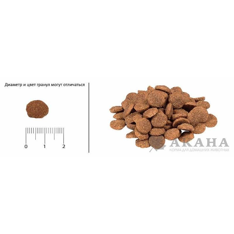 Acana Heritage Adult Small Breed для собак миниатюрных пород с цыпленком и индейкой 2,27 кг (6 кг)