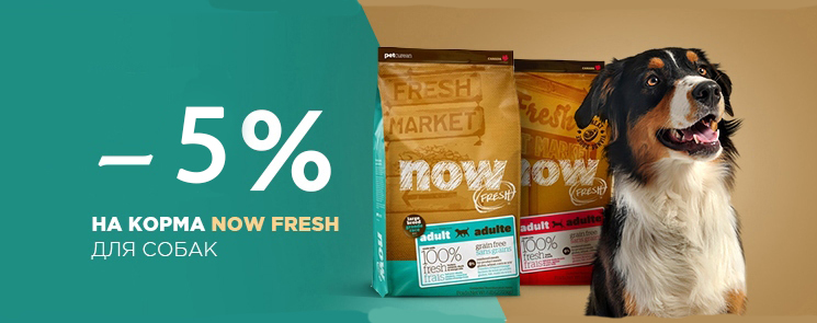 Скидка 5% на корм Now Natural Holistic