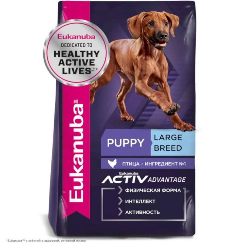 Eukanuba Puppy & Junior Large Breed для щенков с 2 до 24 месяцев крупных пород с курицей 3 кг (15 кг)