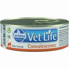 Farmina Vet Life Convalescence влажный корм для взрослых кошек в восстановительный и послеоперационный период с курицей- 85 г х 12 шт