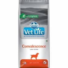 Сухой корм Farmina Vet Life Natural Diet Dog Convalescence для собак в период выздоровления - 2 кг
