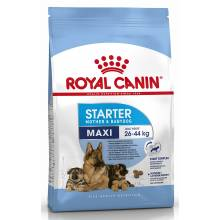 Royal Canin Maxi Starter сухой корм с птицей для щенков крупных пород в период отъема до 2-месячного возраста, беременных и кормящих сук - 4 кг (15 кг) (18 кг)