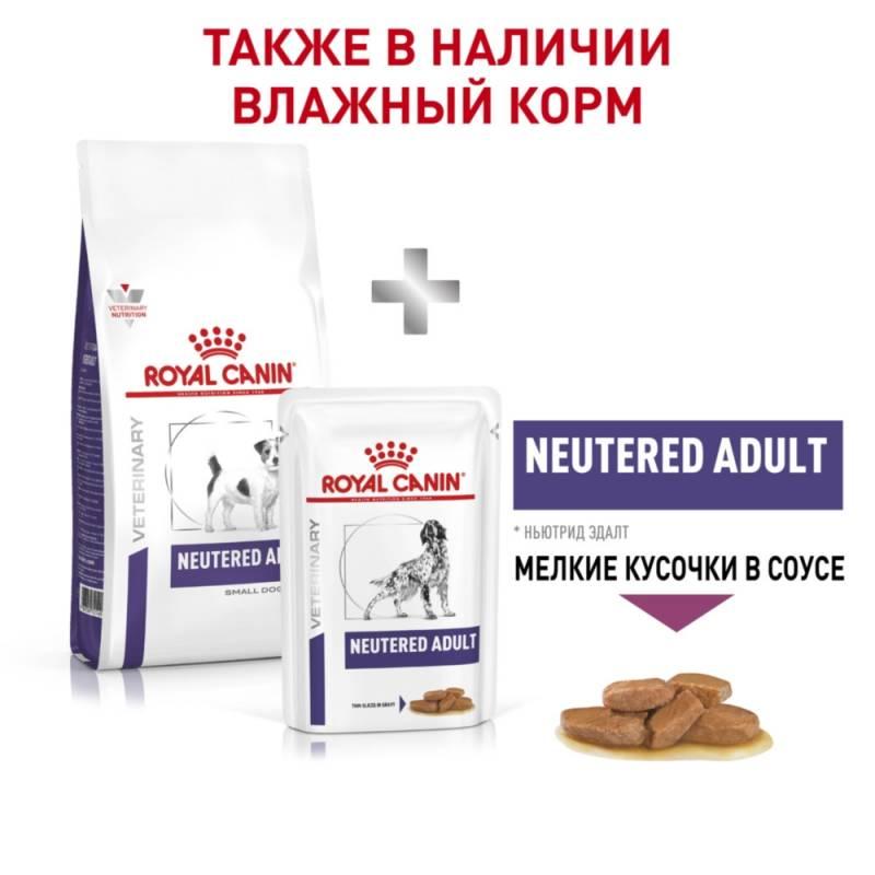 Royal Canin Neutered Adult Small Dog сухой корм для взрослых кастрированных собак мелких пород - 3,5 кг
