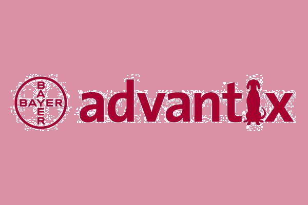 Адвантикс (Bayer)