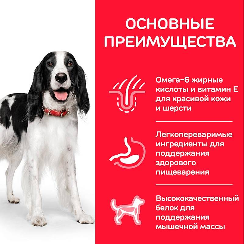 Hill's Science Plan Advanced Fitness корм для собак средних пород от 1 до 7 лет курица 2,5 кг (12 кг)