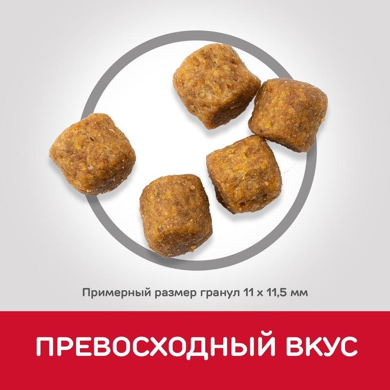 Hill's Science Plan сухой корм для пожилых собак средних пород для поддержания активности и здоровья желудочно-кишечного тракта, с ягненком и рисом 2,5 кг (12 кг)