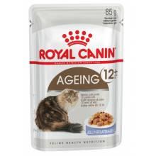 Royal Canin Feline Ageing +12 jelly повседневный влажный корм с мясом в желе для пожилых кошек старше 12 лет - 85 г х 12 шт.